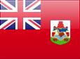 http://s05.flagcounter.com/images/flags_128x128/bm.png